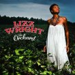 Lizz_Wright_The_Orchard_Album.jpg