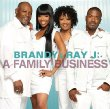 Brandy - (with Ray J) - A Family Business (2011)